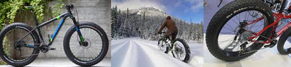Fascia-Fat-Bike